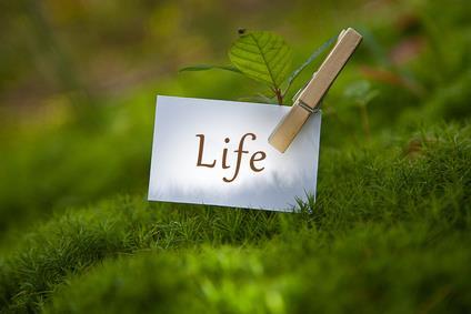 Conférence : Aimer sa vie